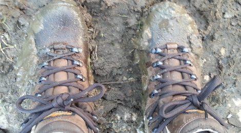 Meindl Women's Toronto GTX Walking Boots