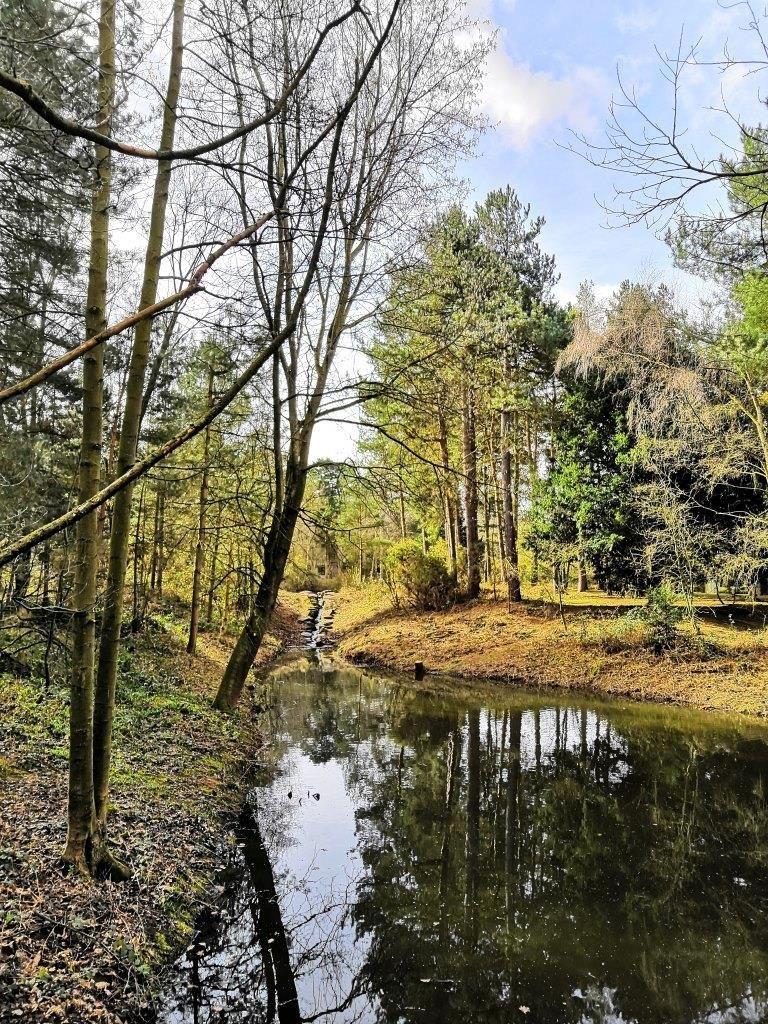 Sherwood Forest, Center Parcs