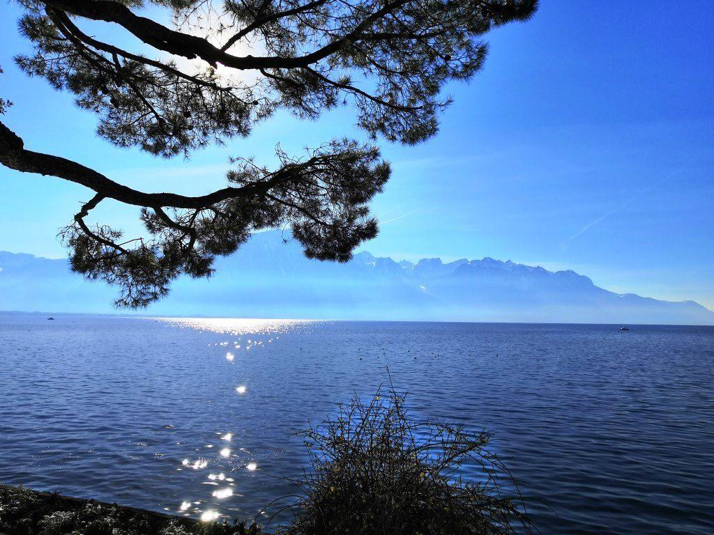 Sunlight on Lake Geneva
