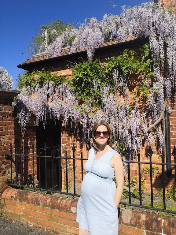 Pregnant in front of wisteria