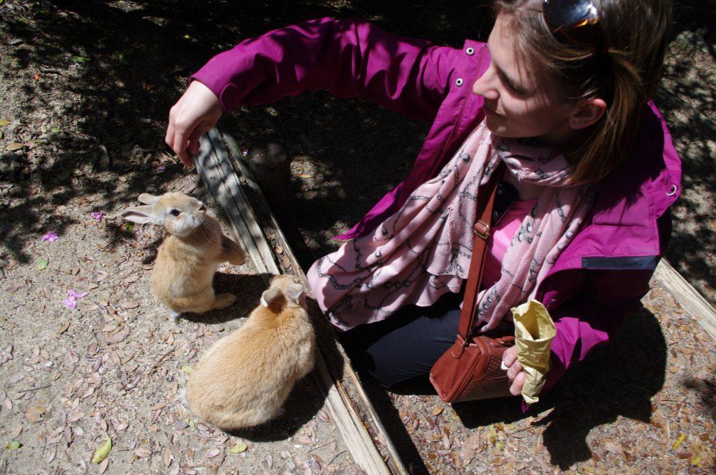 Feeding the bunnies on Rabbit Island in Japan